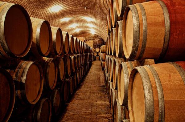 Wine Tasting at Vincent Vineyards